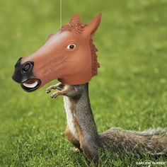 Humiliate your pesky squirrels with this Horse Head Feeder