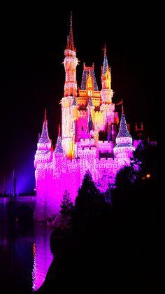 Cinderella Castle  Cake-spiration quince
