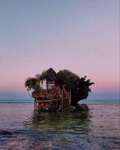 100 Traveling To Zanzibar Ideas In 2021 Zanzibar Stone Town Zanzibar Hotels