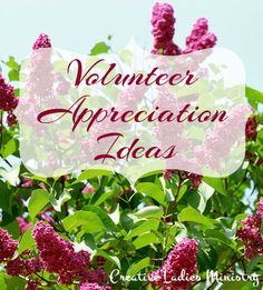 Volunteer Appreciation Ideas:  Volunteer Theme ideas as well as ideas for the speaker, devo., gifts, etc.