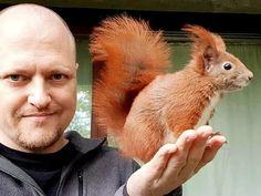 Tintin the red squirrel and his bestie in Copenhagen, Denmark