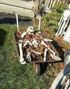 wheel barrel, mulch, dollar store skeleton parts