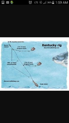 Kentucky rig