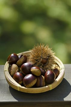 Japanese chestnuts 栗