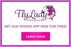 FlyLady.net: Your personal online coach to help you gain control of your house and home