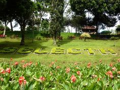 Tempat wisata di Batu Malang - Selecta Batu Malang http://infojalanjalan.com/keindahan-tempat-wisata-di-batu-malang