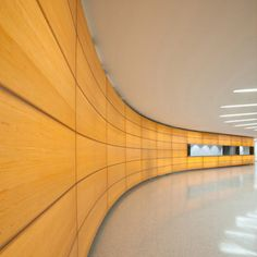 Curved and translucent wood wall with 3form material