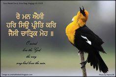 Text from guru granth sahib ji....
