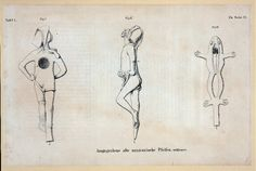 [Three views of Mexican pipes, one in shape of human, one in shape of frog.] From New York Public Library Digital Collections.