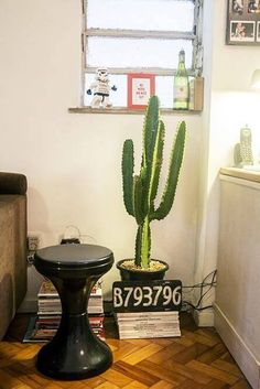 Plantas em Vaso - cacto na decoração cantinho revisteiro casa aberta 18500
