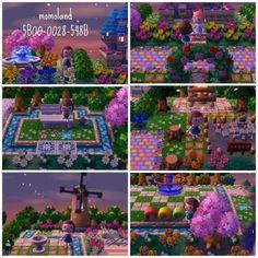 momoland dream town