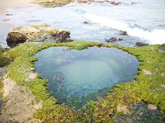Heart Rock. (Heart-shaped tide pool.) Looking for more information about Kagoshima? Go Visit Tatsugo Town. http://www.town.tatsugo.lg.jp/