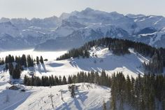 View of the piste in Les Gets.