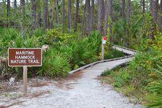 The Charm of the Island | Bald Head Island, North Carolina