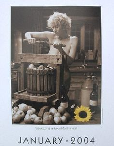 Helen Mirren in the 2003 movie Calendar Girls about Women's Institute members who posed nude to raise funds