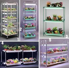 Be a good way to grow things indoors, maybe using those shelves at Mitre 10/office works