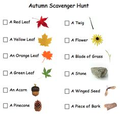 Autumn Scavenger Hunt:   I took this idea and made my own for older kids.  I put a point value next to each item so we could break out in groups and make it more competitive.  I included things like: Take a picture around a large tree, write down the address of a house with smoke coming from the chimney, etc.  Fun to do before/ after Thanksgiving dinner?