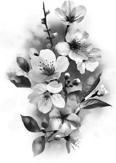 Asian Flowers, Flowers Nature, Beautiful Flowers, Cherry Blooms, Cherry Flower, Floral Tattoo Design, Flower Tattoo Designs, Flower Tattoo Drawings, Flower Tattoos