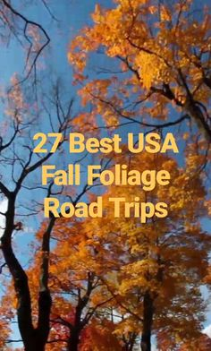 27 Best Fall Foliage Destinations To Visit In The USA - You don't have to travel far to experience the USA's famous Fall foliage. Explore the wonder of changing seasons and check out our 27 picks for the best fall foliage destinations. Us Travel Destinations, Places To Travel, Us Road Trip, Road Trip Hacks, Best Road Trips, Canada Travel, Travel Usa, Oregon Travel, Usa Tumblr