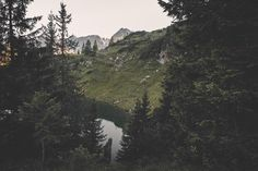 Glimpse. Folks it's that Time again! EVERYTHING in my Society6 store is FREE SHIPPING these days. I'd love to see you grab something nice! The Link is in my Bio. Thanks so much everybody!  Snapventures: @regnumsaturni Digital art landscapes portraits and documentary photography by regnumsaturni. www.regnumsaturni.com Prints: www.society6.com/regnumsaturni www.redbubble.com/people/regnumsaturni #landscape #photography #nature #explore #tranquil #wanderlust