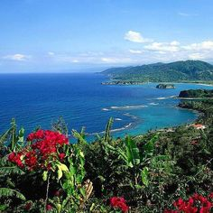 Comparateur de voyages http://www.hotels-live.com : Is there anything better than stretching out in a warm patch of Jamaican sun? Only if you sprinkle your island vacation with a dash of adventure  and this #TravelersChoice island has plenty of it! Known fondly as the land of wood and water Jamaicas forests feature prime hiking and bird watching. History buffs can the heritage sites of Trelawny while reggae and dancehall fans will love the authentic music clubs of Kingston. Hotels-live.com…