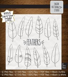 Feather Clip Art, Feather Drawing, Feather Vector, Feather Illustration, Outline Illustration, Outline Drawings, Aztec Decor, Illustrator Cs5, Silver Glitter