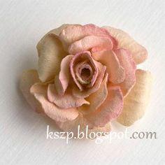 http://kszp.blogspot.ch/2013/11/kurs-na-dzikie-roze.html