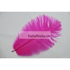 Fuchsia Ostrich Feathers 100 Pieces 6-8 inch Wholesale by dozens or bulks for wedding Centerpieces Crafts arts DIY Events and Stage Performance Decorations