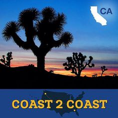 Get out explore the Inland Empire in #California! Youll experience one of a kind places like #JoshuaTree National Park and the Desert Hot Springs. Book your California drive tour now: http://go.bestwesterncalifornia.com/inland-empire Hotels-live.com via