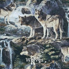 """Wolves Print 20x20"""" Pillow Case - by SelemeHealth"""