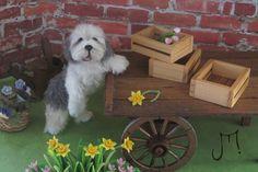 OOAK Handmade Dollhouse Dog 1:12 scale miniature Sculpture ByJulie Parrott | eBay