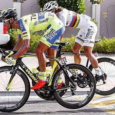 Abu Dhabi Tour PeterSagan Daniele Bennati