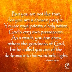 But you are not like that, for you are a chosen people. You are royal priests, a holy nation, God's very own possession. As a result, you can show others the goodness of God, for he called you out of the darkness into his wonderful light. - 1 Peter 2-9 (NLT) Bible verse | CrossRiverMedia.com