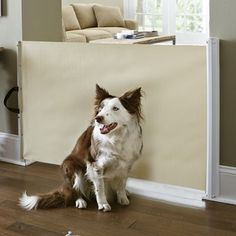 Retractable pup gate $40
