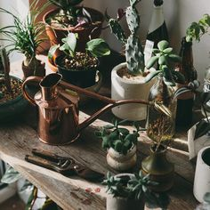 Copper Watering Can - The Future Kept - 5