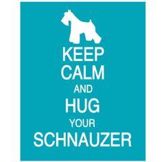 Schnauzer Love!