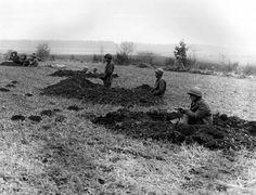 Les troupes des États-Unis bataillon de chasseur de chars 630ème, tous les véhicules perdues au combat, affecté à la ligne de front près de Bastogne (Belgique), 20 décembre 1944 Troops of US 630th Tank Destroyer Battalion, all vehicles lost in combat, manning the front line near Bastogne, Belgium, December 20, 1944
