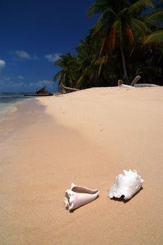 """Archipiélago de San Blas – Kuna Yala: """"...playas de arena finísima, llenas de cocoteros y bañadas por el siempre agradecido mar Caribe""""."""
