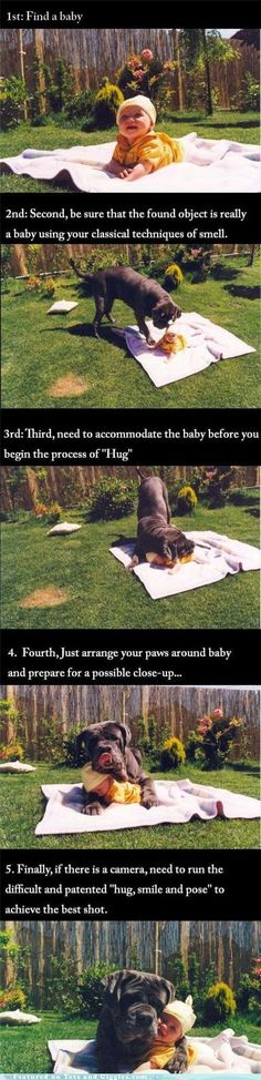 The Proper Procedure for Hugging aBaby - not sure I would have been comfortable watching a dog do this to my baby, but it is pretty darn cute.