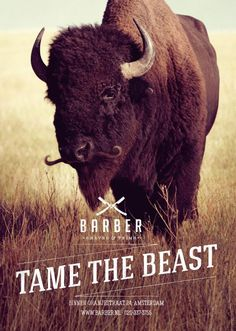 Tame the beast, Bison, Barber Shaves & Trims, 180 Amsterdam, Barber , Print, Outdoor, Ads