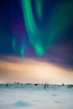 up high - Helga Kvam    And like a colorful bloom of temporary lights in the sky, you will shine.  Chad Sugg    The beautiful Aurora Borealis shining above the frost-fog covered town of Akureyri in Eyjafjörður, N-Iceland.