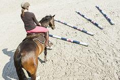 Diese acht Übungen verhelfen Ihnen und Ihrem Pferd zu mehr Kraft, Balance und Takt - und wenn Sie keine Cavaletti haben, gibt's den ultimativen Tipp obendrauf.