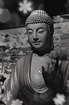 Wholesome thoughts and actions are the best method to recognize the true nature of self. | Pensieri e le azioni salutari sono il il metodo migliore per riconoscere la vera natura del sé. #buddhism #mindfulness