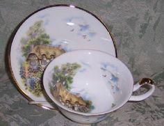 Cottage English Bone China Teacup Staffordshire Sheltonia Tea Cup