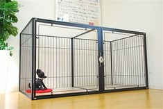 幅180×奥行き90×高さ90cm。大型犬の大型ケージ。アクリル扉で圧迫感もなし。白・黒・赤から選べる Stairs, Room, Home Decor, Products, Bedroom, Stairway, Decoration Home, Room Decor, Staircases