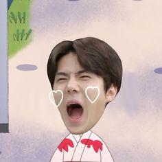 Exo Kai, Luhan, Sehun Cute, I Still Want You, Exo Memes, Meme Faces, Derp, Besties, Chibi