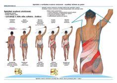 SM systém - metóda účinných cvičení aj na doma - MojaMasaz.sk Health Care, Health Fitness, Relax, Spiral, Text Posts, Sporty, Fitness, Health, Health And Fitness