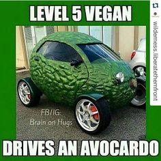 Great post #lifegoals #vegangoals #vegoals #Repost @wilderness.liberatethemfront with @repostapp  @Regrann from @_noella_love -  Is it electric tho?  good night  #vegan #GoVegan #vegatarian #veganlife #vegansofig #avocado #fruit #vegetables #food #foodporn #meme #car #joke #laugh #fun #funny #humor #car #compassion #CrueltyFree #Regrann by fascist_vegan