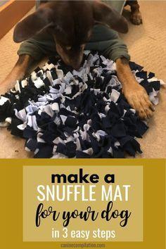 Dog Enrichment, Diy Dog Toys, Homemade Dog Toys, Dog Games, Dog Crafts, Dog Activities, Diy Stuffed Animals, Dog Life, Dog Training