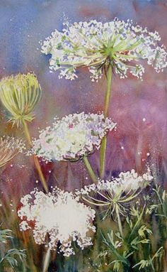 Lacy Days WIP - WetCanvas, Ann Blockley. Queen Anne's Lace.